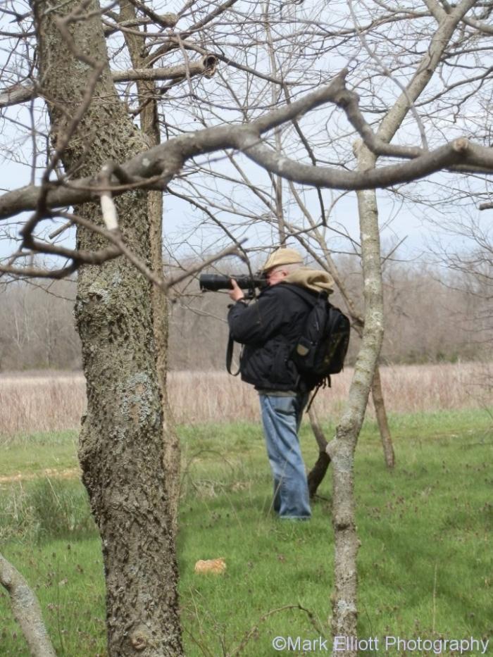 mark-birding